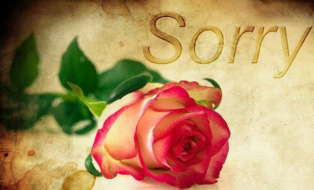 kreslený nápis sorry a růže