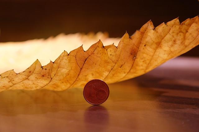 mince, euro cent, list jilmu